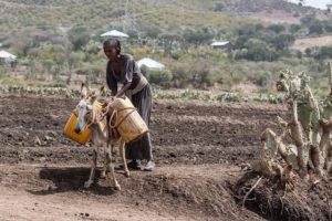 Le condizioni di vita sono scarse in Etiopia