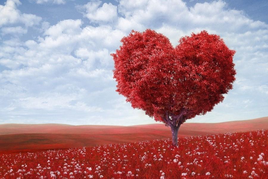 albero a forma di cuore come rappresentazione di un cuore sano