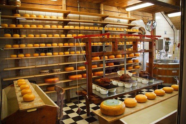 i formaggi sono alimenti trasformati
