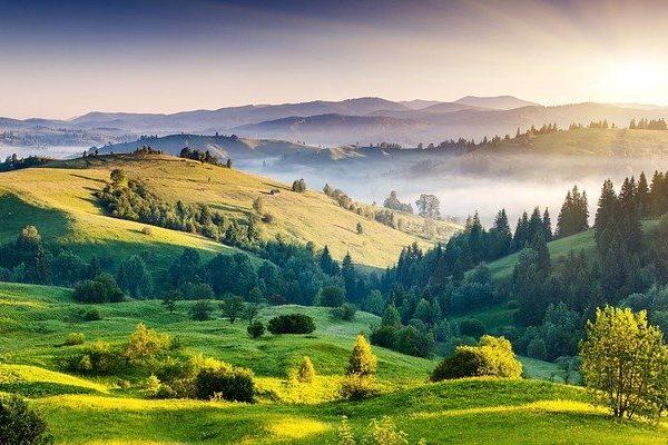 Le colline della Marche sono piene di campi coltivati che regalano agli abitanti frutta verdura e animali del territorio